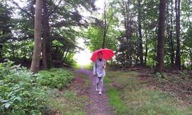 meine kleine Prinzessin mit den roten Schirm auf den Rennsteig